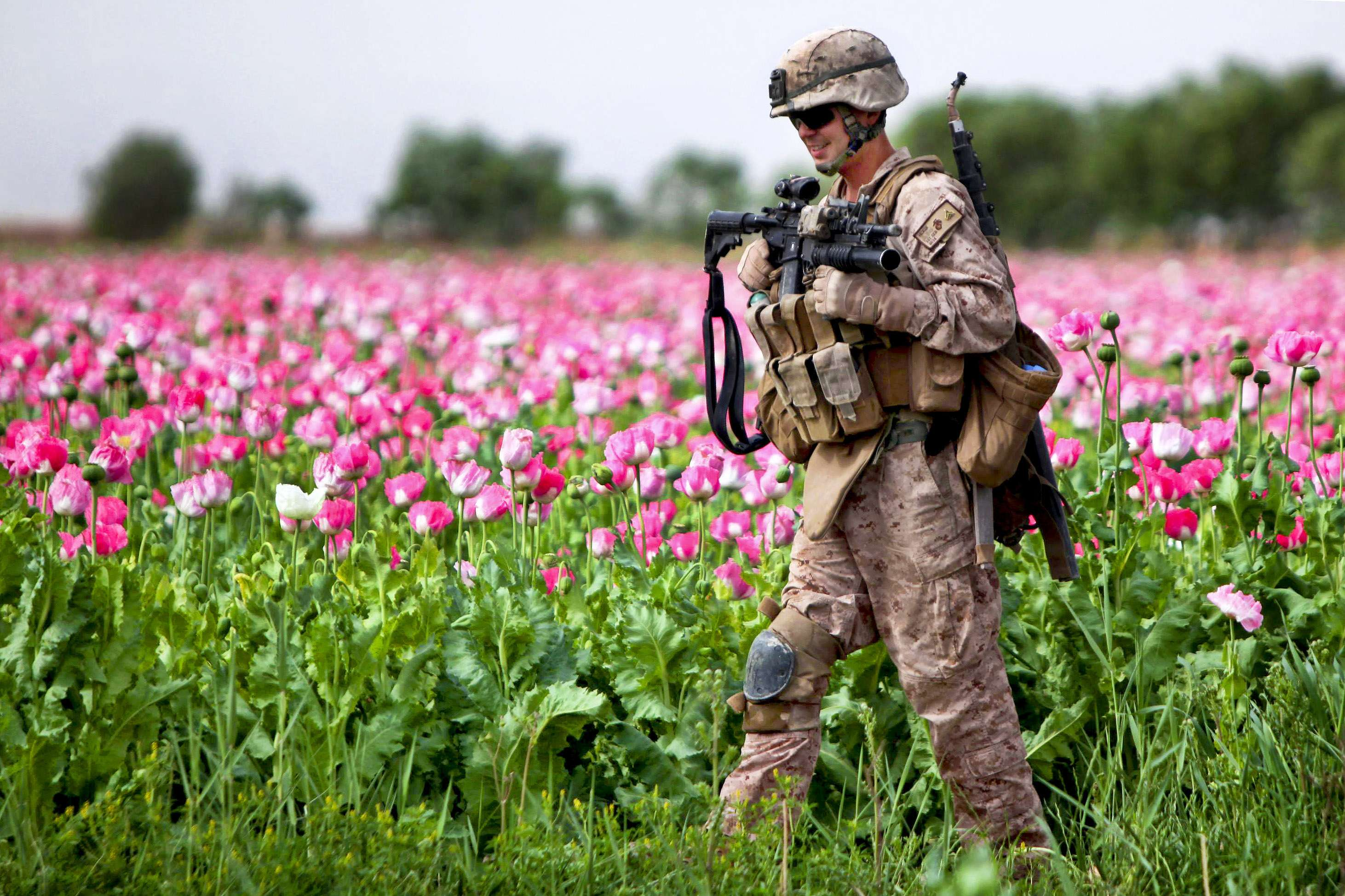 U.S. Marine Corps Cpl. Mark Hickok patrols through a field during a clearing mission in Marja in Afghanistan's Helmand province on April 9, 2011. (Image Credit: U.S. Marine Corps/John M. McCall)